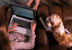 girl using laptop on couch with dog