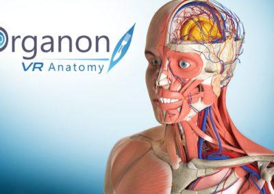 Organon VR